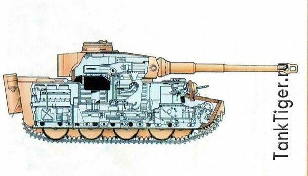 Схема Тигра в разрезе.