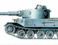tigrporsch