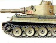 tigrsboku
